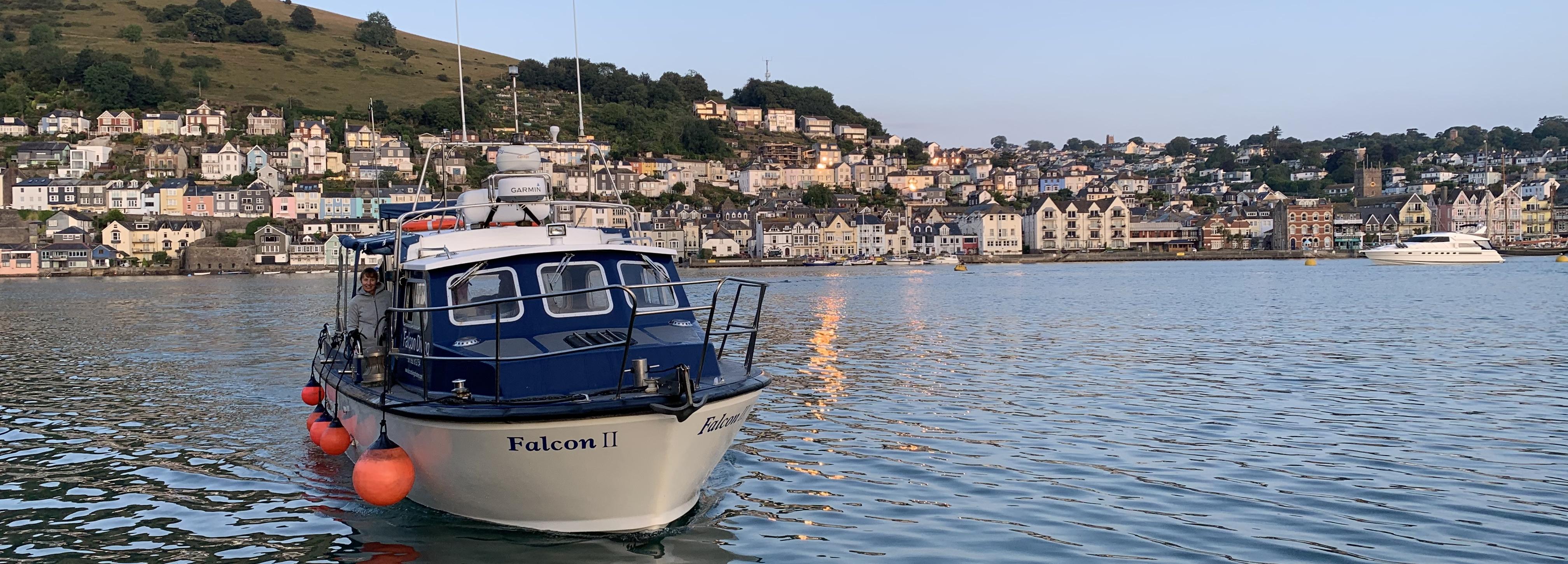 Falcon Dartmouth